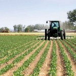 Оформление Сельскохозяйственного Кредита